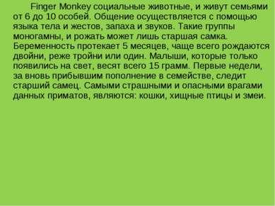 Finger Monkey социальные животные, и живут семьями от 6 до 10 особей. Общение...