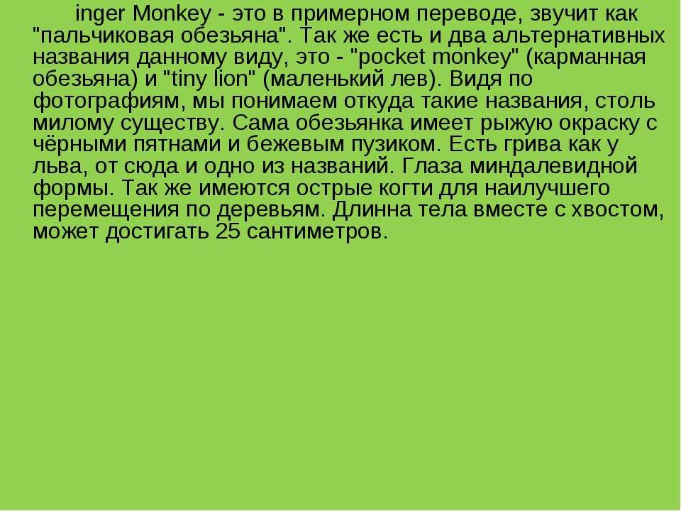 """inger Monkey - это в примерном переводе, звучит как """"пальчиковая обезьяна"""". Т..."""