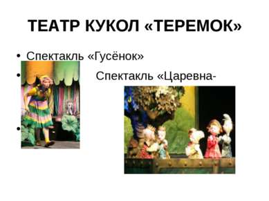 ТЕАТР КУКОЛ «ТЕРЕМОК» Спектакль «Гусёнок» Спектакль «Царевна-лягушка»