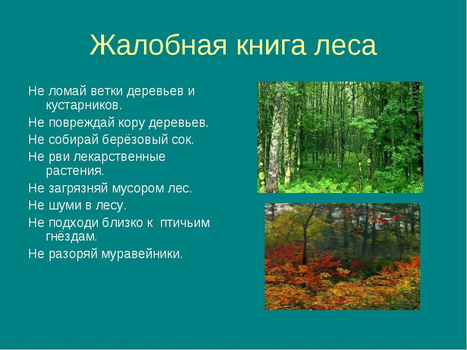 Жалобная книга леса Не ломай ветки деревьев и кустарников. Не повреждай кору ...