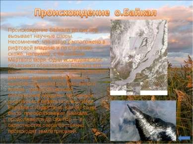 Происхождение Байкала до сих пор вызывает научные споры. Несомненно, что озер...