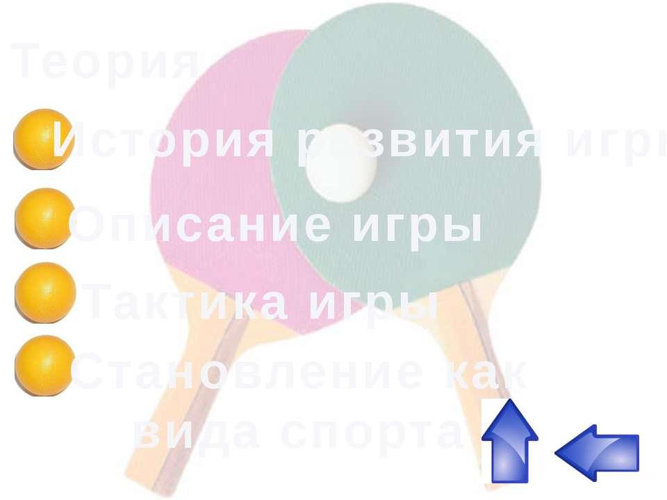 Теория История развития игры Описание игры Становление как вида спорта Тактик...