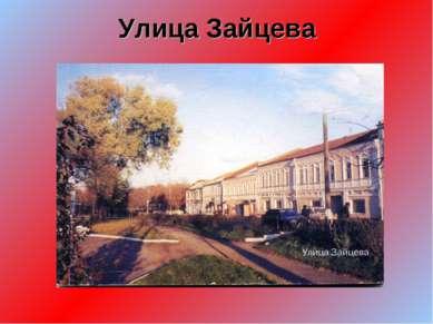 Улица Зайцева
