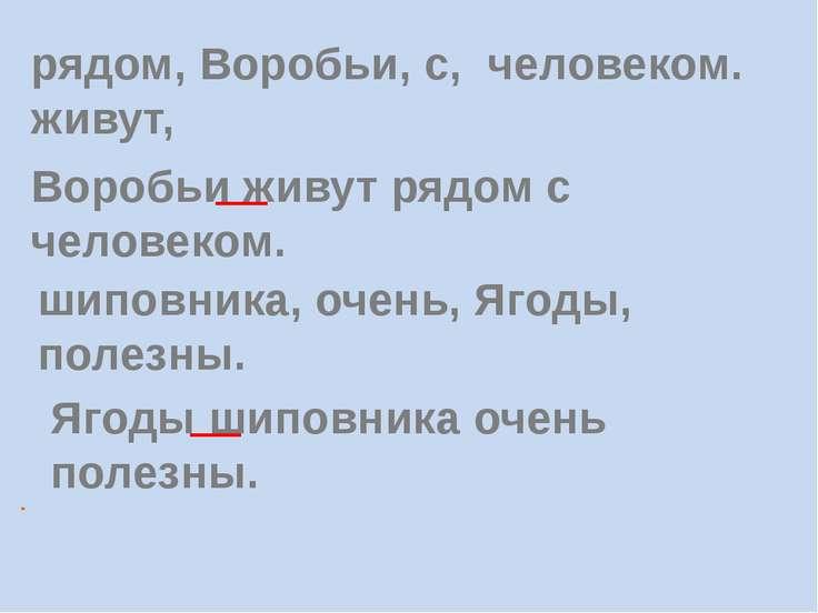 . рядом, Воробьи, с, человеком. живут, Воробьи живут рядом с человеком. шипов...
