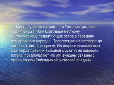 Многие ученые считают, что Ушканий архипелаг поднялся из глубин благодар...