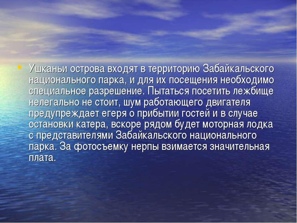 Ушканьи острова входят в территорию Забайкальского национального парка, и для...