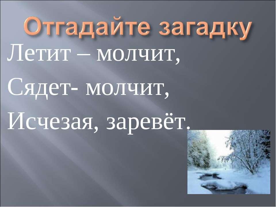 Летит – молчит, Сядет- молчит, Исчезая, заревёт.