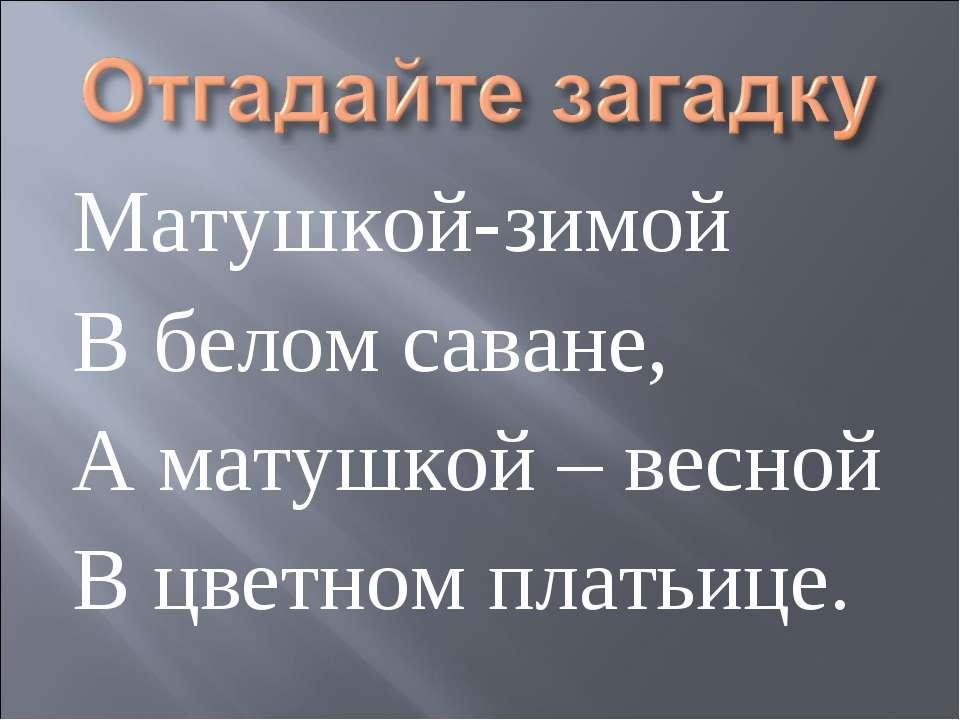 Матушкой-зимой В белом саване, А матушкой – весной В цветном платьице.