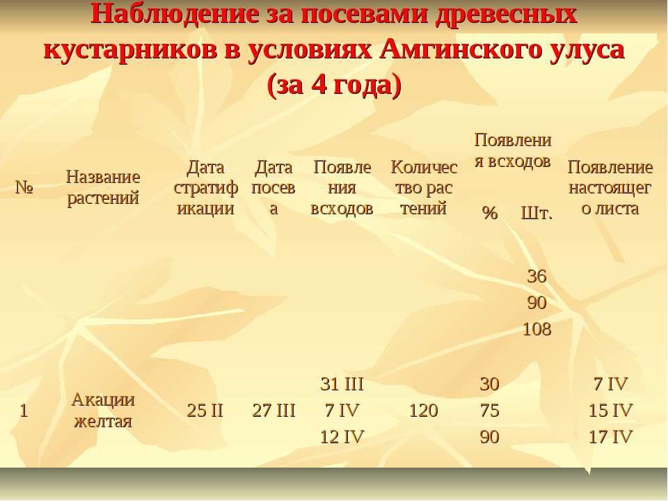 Наблюдение за посевами древесных кустарников в условиях Амгинского улуса (за ...