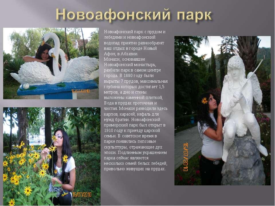 Новоафонский парк с прудом и лебедями и новоафонский водопад приятно разнообр...