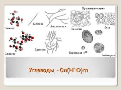 Углеводы - Cn(H₂O)m