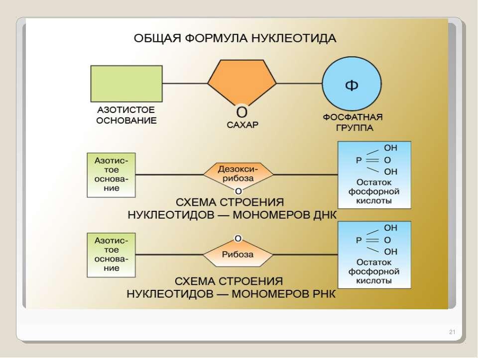 Как составить схему кислота