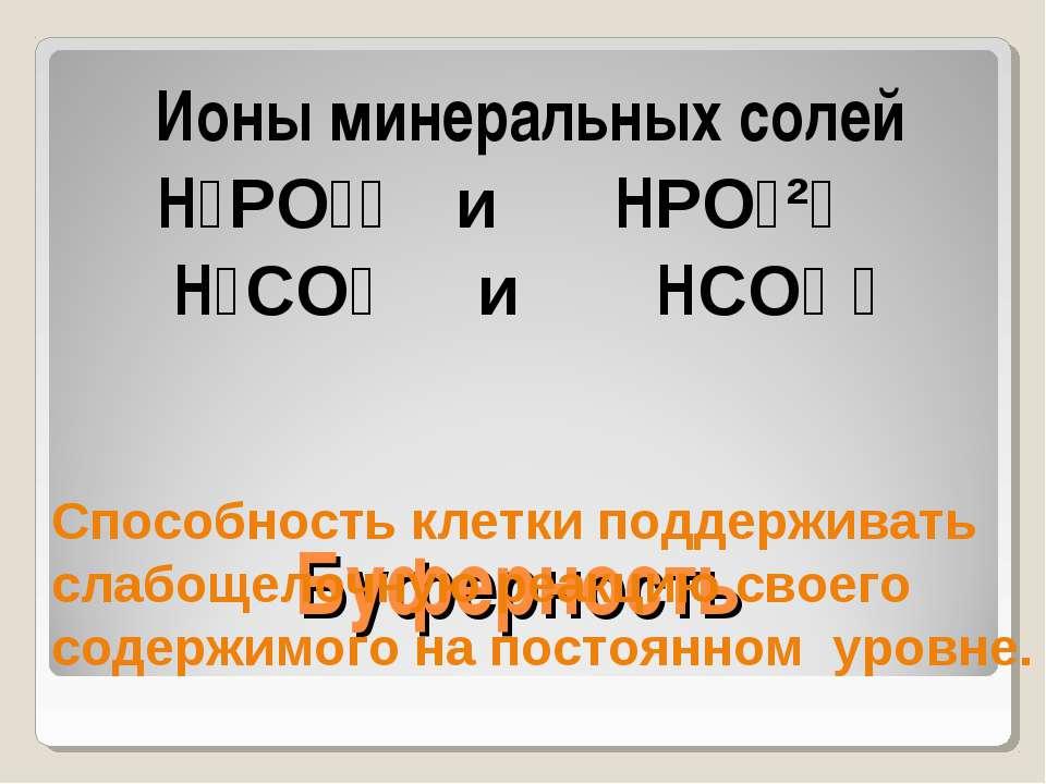 Буферность Ионы минеральных солей H₂PO₄⁻ и HPO₄²⁻ H₂CO₃ и HCO₃ ⁻ Способность ...
