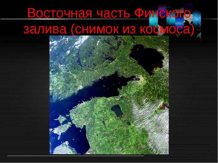 Восточная часть Финского залива (снимок из космоса)