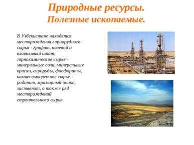 Природные ресурсы. Полезные ископаемые. В Узбекистане находятся месторождения...