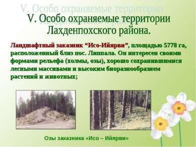 """Ландшафтный заказник """"Исо-Ийярви"""", площадью 5778 га, расположенный близ пос. ..."""