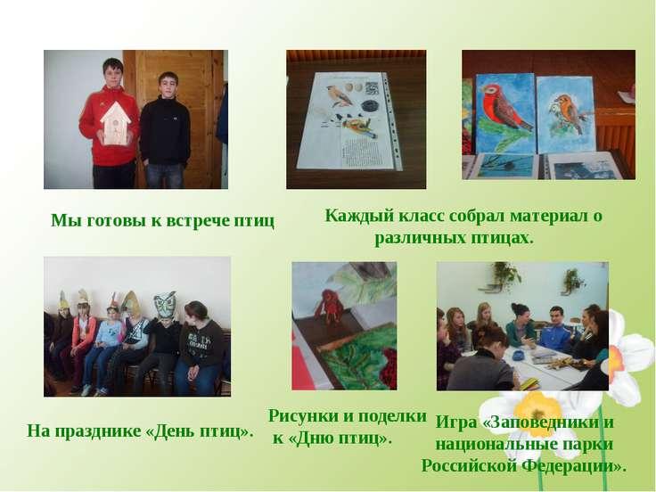 Мы готовы к встрече птиц Каждый класс собрал материал о различных птицах. На ...