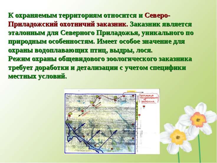 К охраняемым территориям относится и Северо-Приладожский охотничий заказник. ...