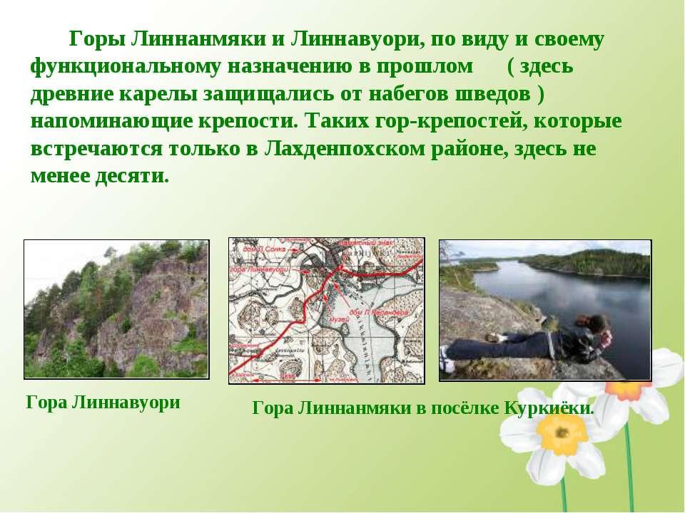 Горы Линнанмяки и Линнавуори, по виду и своему функциональному назначению в п...