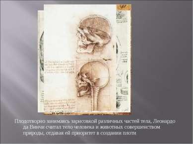 Плодотворно занимаясь зарисовкой различных частей тела, Леонардо да Винчи счи...