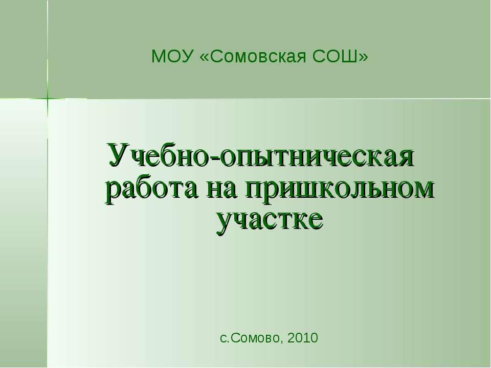 МОУ «Сомовская СОШ» Учебно-опытническая работа на пришкольном участке с.Сомов...