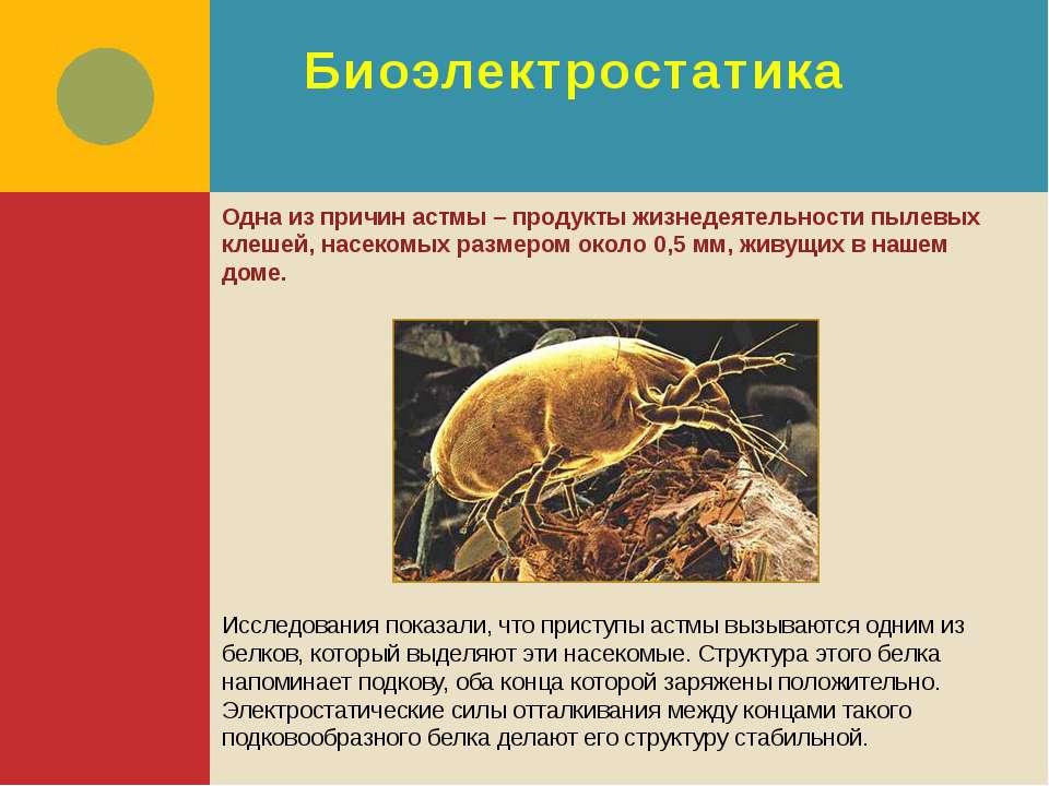 Биоэлектростатика Одна из причин астмы – продукты жизнедеятельности пылевых к...