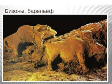 Бизоны, барельеф