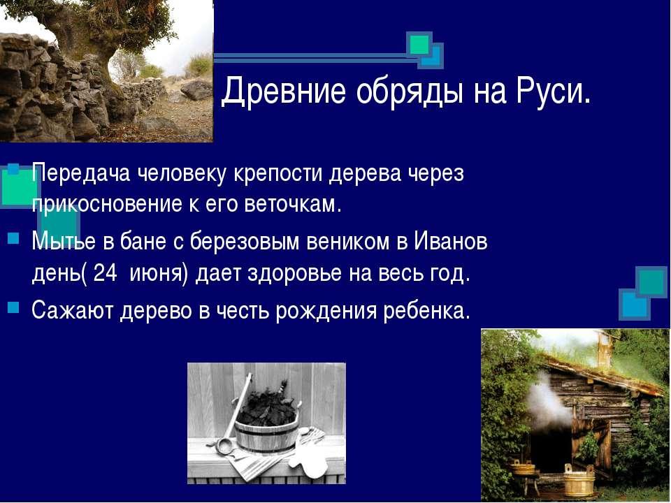 Древние обряды на Руси. Передача человеку крепости дерева через прикосновение...