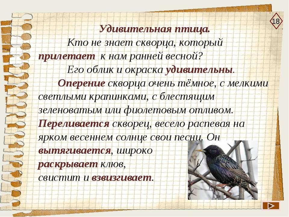 18 Удивительная птица. Кто не знает скворца, который прилетает к нам ранней в...