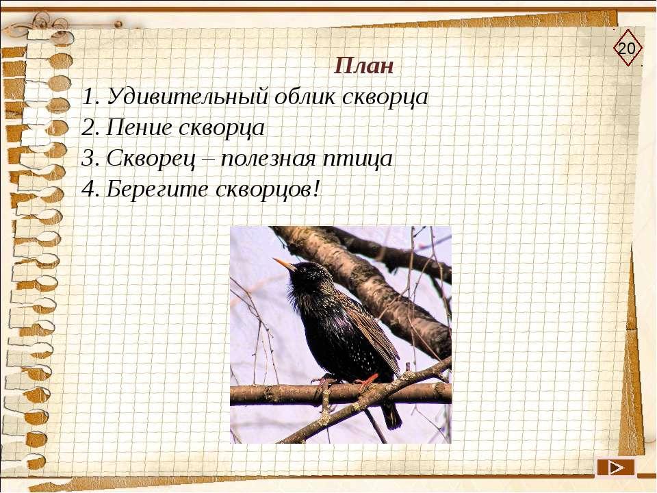 План Удивительный облик скворца Пение скворца Скворец – полезная птица Береги...
