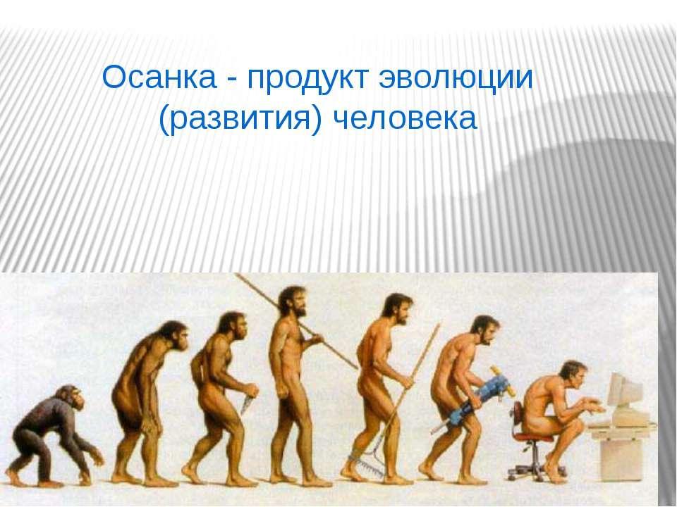 Осанка - продукт эволюции (развития) человека