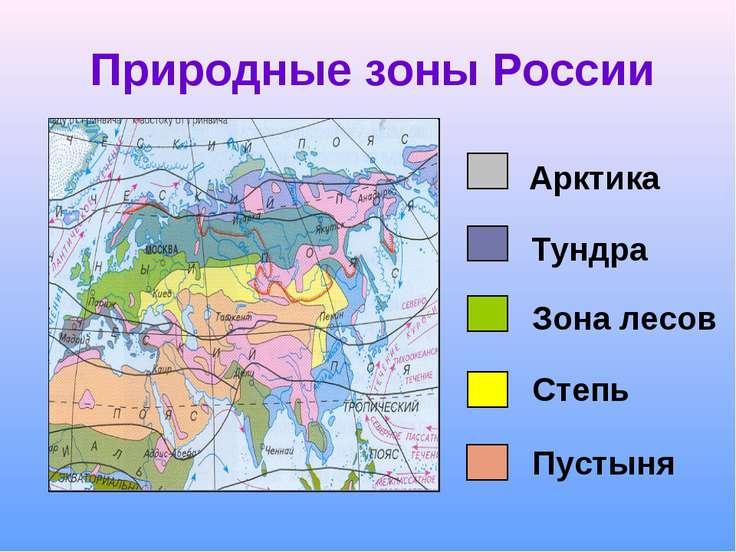 Природные зоны России