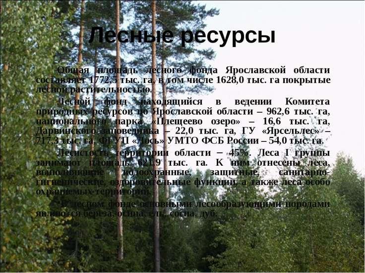 Лесные ресурсы Общая площадь лесного фонда Ярославской области составляет 177...