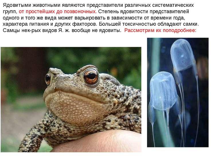 Ядовитыми животными являются представители различных систематических групп, о...