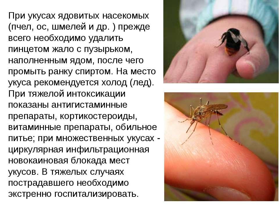 При укусах ядовитых насекомых (пчел, ос, шмелей и др. ) прежде всего необходи...