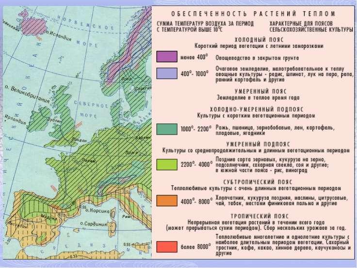 Основные типы С/Х Европы В силу природных и исторических условий в Европе сло...