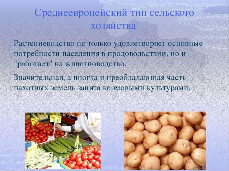 """Южно-европейский тип сельского хозяйства Главным """"садом Европы"""" называют побе..."""