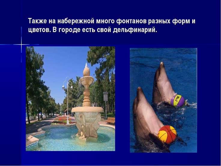 Также на набережной много фонтанов разных форм и цветов. В городе есть свой д...