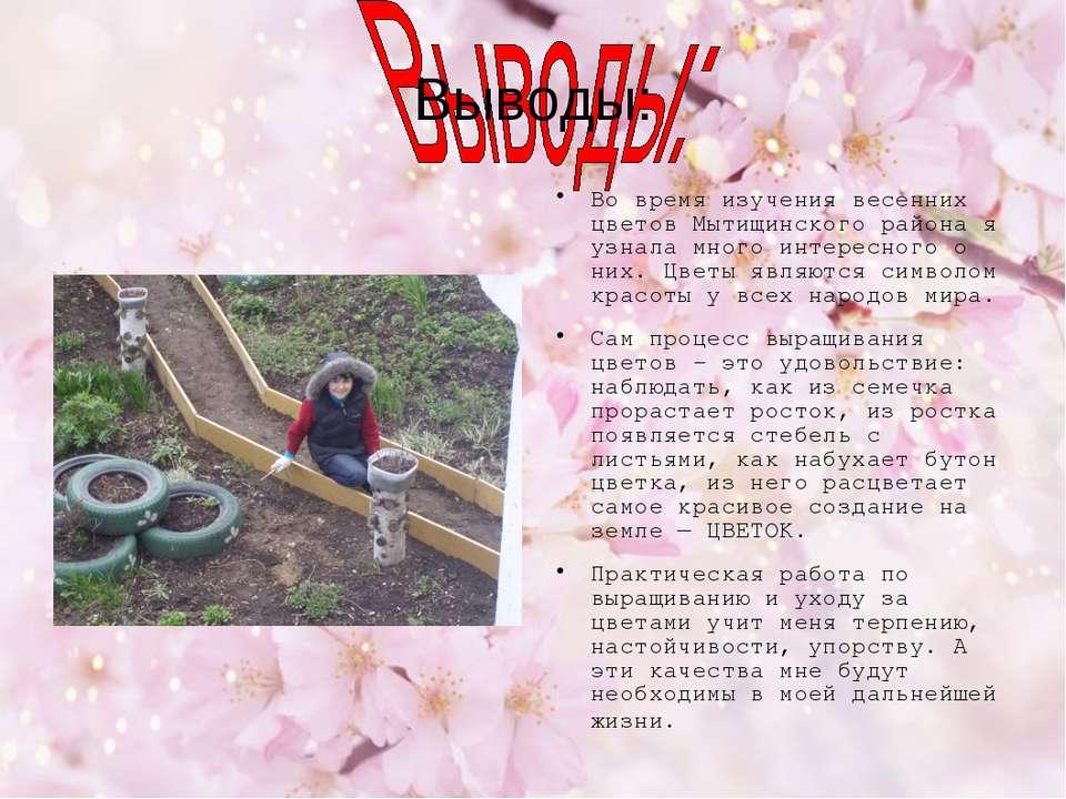 Выводы: Во время изучения весенних цветов Мытищинского района я узнала много ...