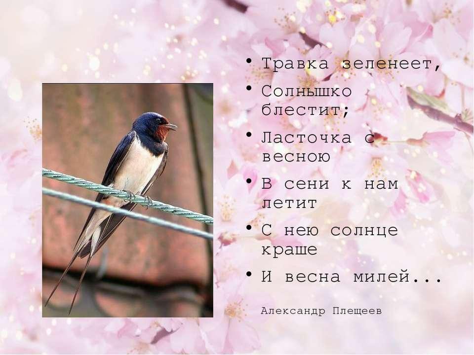 Травка зеленеет, Солнышко блестит; Ласточка с весною В сени к нам летит С нею...
