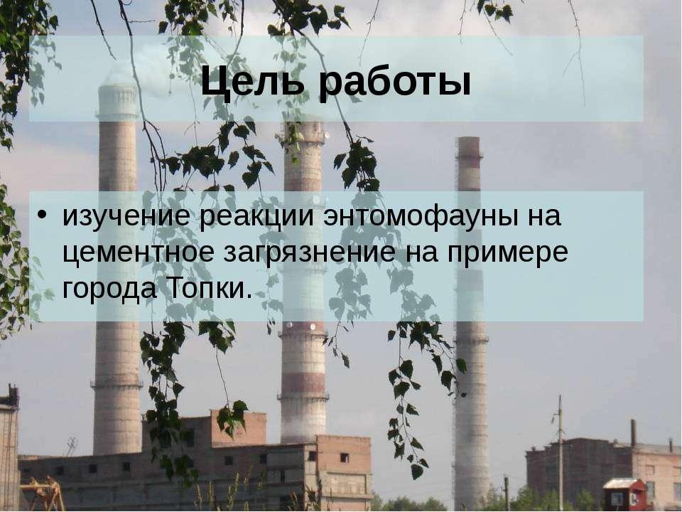 Цель работы изучение реакции энтомофауны на цементное загрязнение на примере ...