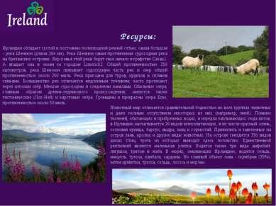 Ресурсы: Ирландия обладает густой и постоянно полноводной речной сетью; самая...