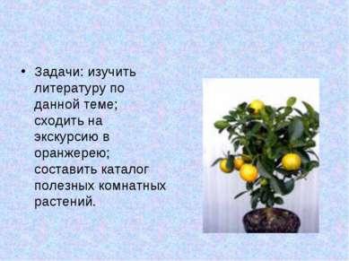 Задачи: изучить литературу по данной теме; сходить на экскурсию в оранжерею; ...