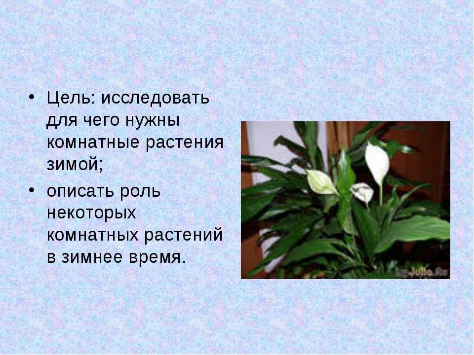 Цель: исследовать для чего нужны комнатные растения зимой; описать роль некот...