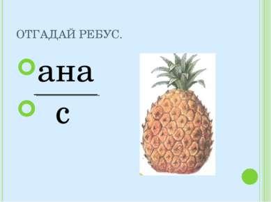 ОТГАДАЙ РЕБУС. ана с