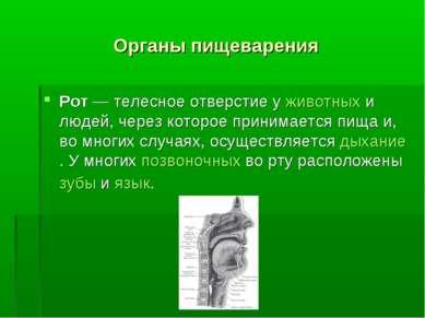 Органы пищеварения Рот — телесное отверстие у животных и людей, через которое...