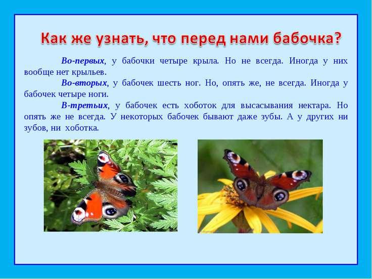 Во-первых, у бабочки четыре крыла. Но не всегда. Иногда у них вообще нет крыл...
