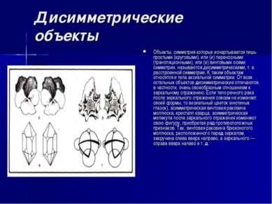Дисимметрические объекты Объекты, симметрия которых исчерпывается лишь просты...