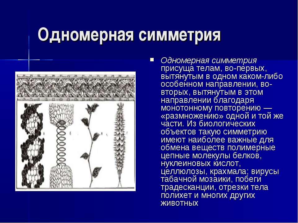 Одномерная симметрия Одномерная симметрия присуща телам, во-первых, вытянутым...