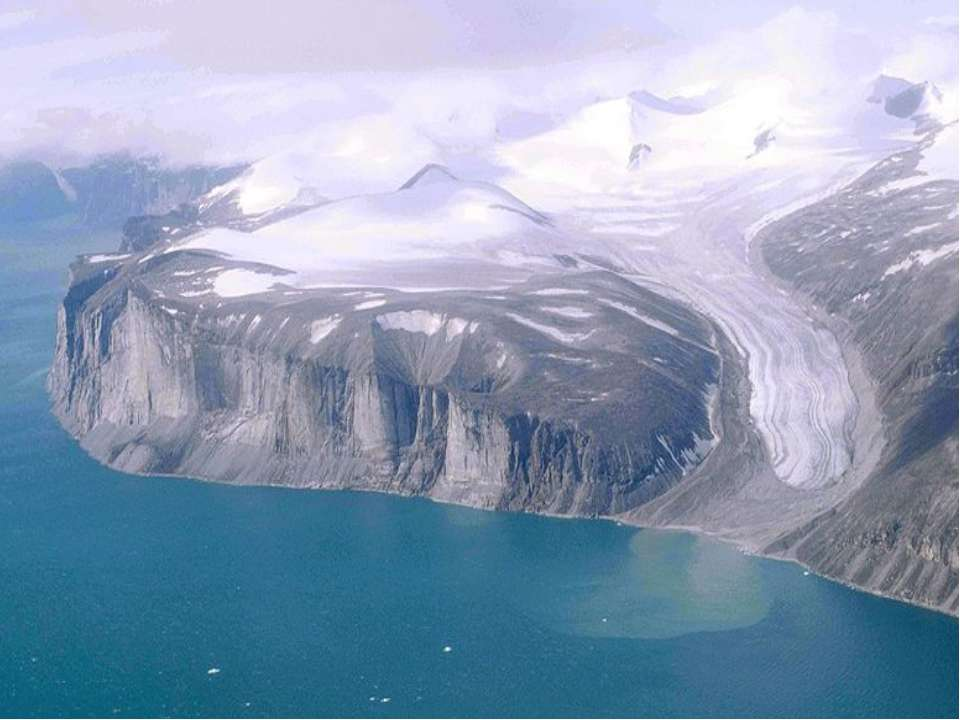 Берега Северной Америки Сильно расчленены. Особенно изрезаны северные и восто...